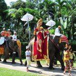 bali_elephant020